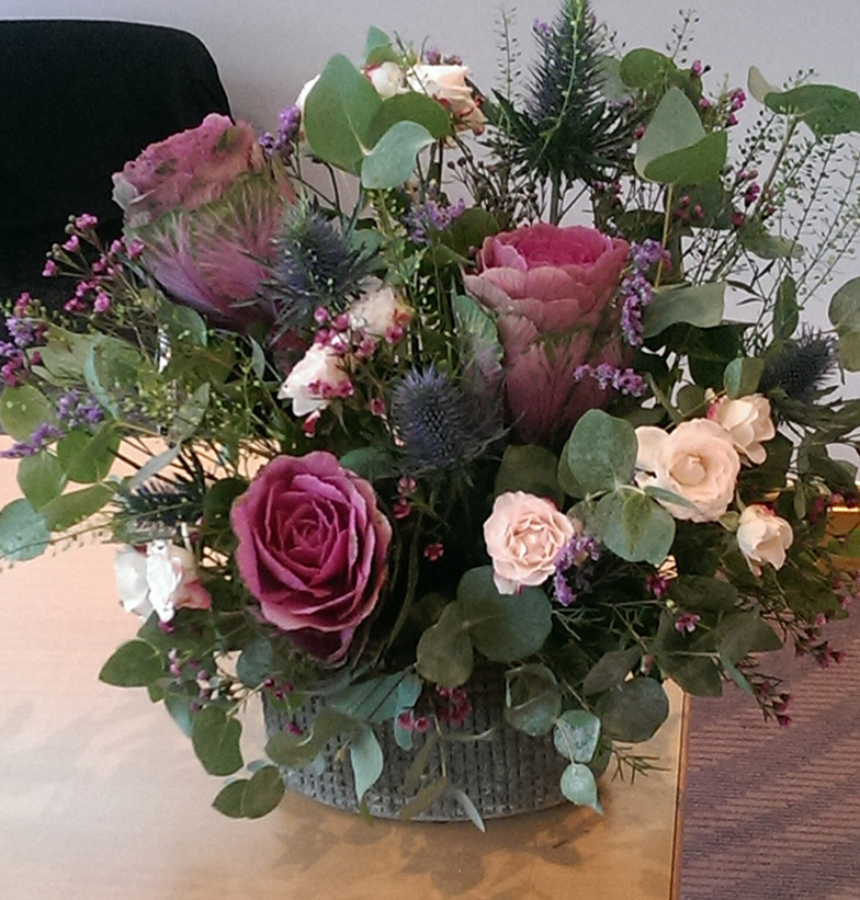 Brassica arrangement