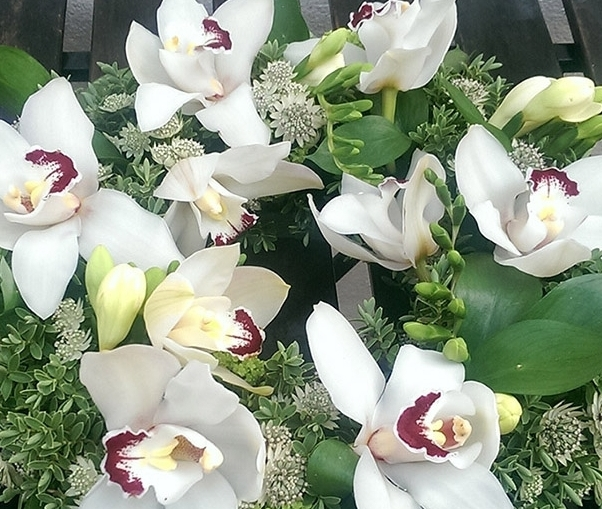 Deepest sympathy, orchids, funeral