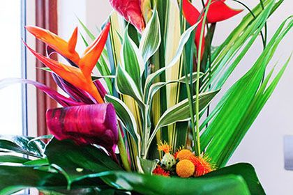Tropical arrangements