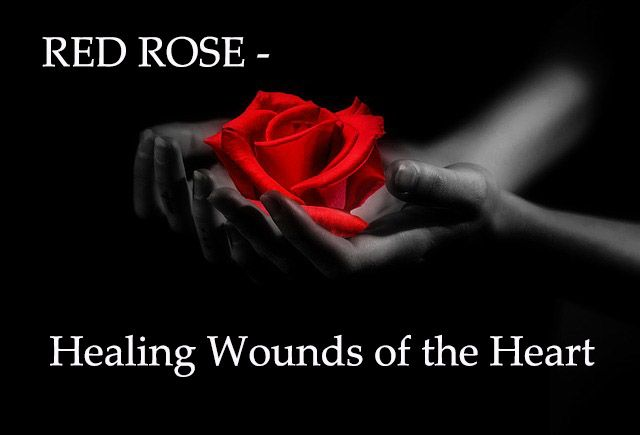 RED ROSE - Healing Wounds of the Heart