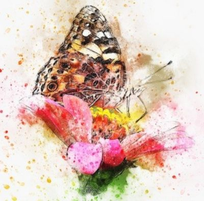 Open Up Your Creativity With The Power Of Flowers - Sunday 24th May - 11am