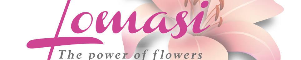 Lomasi-pf.com, site logo.