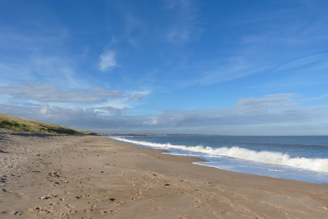 the strandline warkworth beach 3
