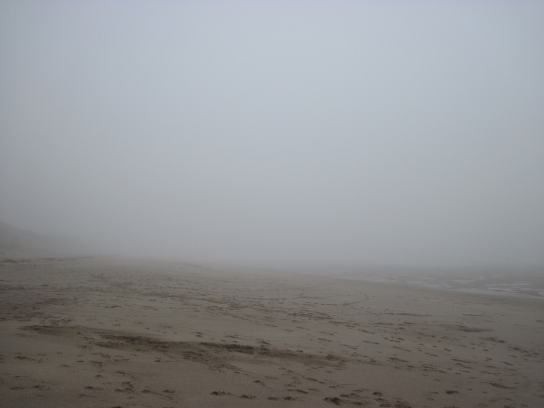 misty morning warkworth beach looking north (1)