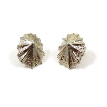 Sterling Silver Limpet Shell Stud Earrings