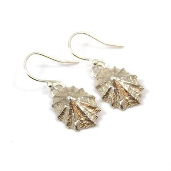 Sterling Silver Limpet Shell Drop Earrings