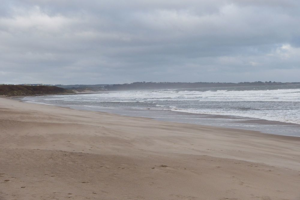 20171112 Warkworth Beach heading north in north wind