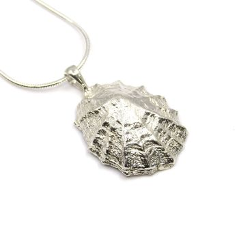Sterling Silver Limpet Seashell Pendant Necklace Hallmarked