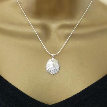 Sterling Silver Limpet Seashell Pendant Necklace Hallmarked - Large Limpet Shell