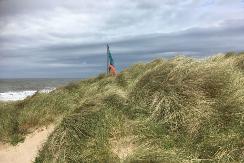 20200606 Beach Walk (5)