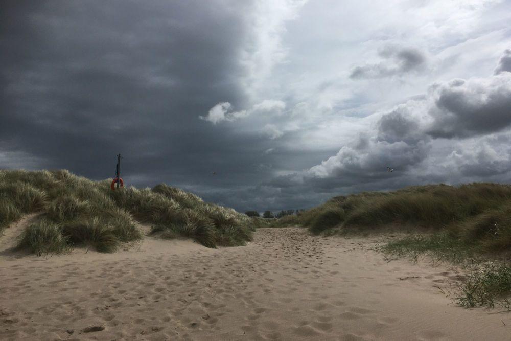 20200606 Beach Walk (4)
