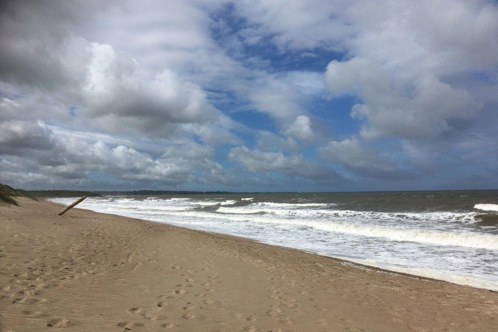 20200606 Beach Walk (3)
