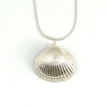 Sterling Silver Cockle Shell Pendant Necklace - Medium Cockle Shell