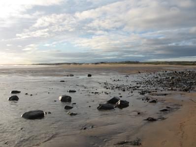 thestrandline Alnmouth Beach