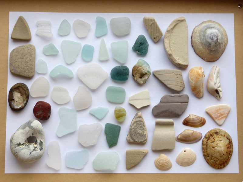beachy finds thestrandline shells beach pottery sea glass bonfire glass
