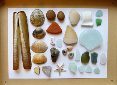 thestrandline beach finds sea glass beach glass shells holey stones starfis