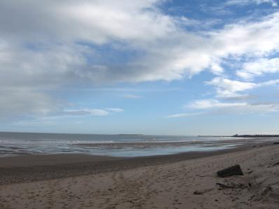 Fridays beach walk