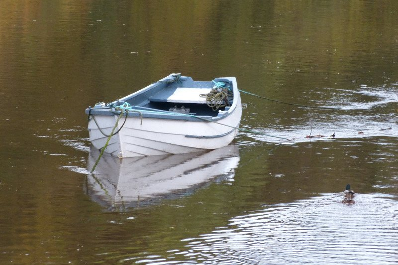 rowboat on river coquet warkworth 6x4