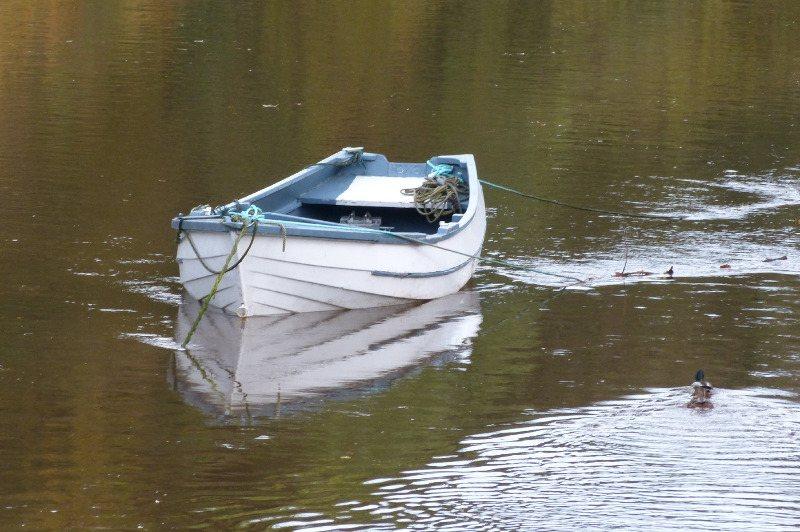 rowboat on river coquet warkworth 6x4