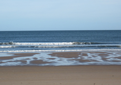 warkworth beach 3 create blog
