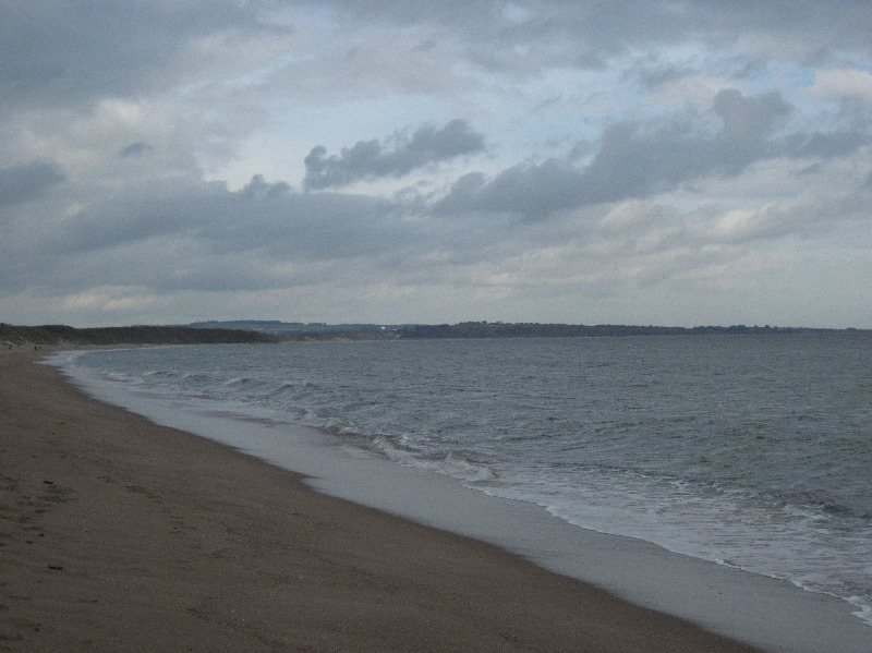warkworth beach - looking north the strandline (2)