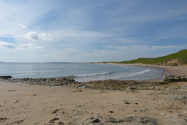 warkworth beach this morning - fabulous! (3) 2x1