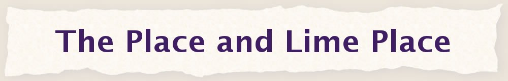The Place and Lime Place, site logo.