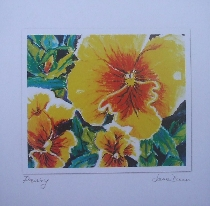 yellow pansy card