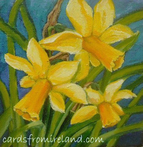 daffodil f.03