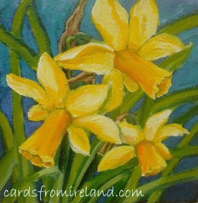 Daffodil  Code F.03
