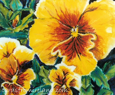 Pansy 01 Code: F.05
