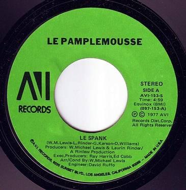 LEPAMPLEMOUSSE - LE SPANK - AVI