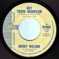 OBREY WILSON - HEY THERE MOUNTAIN - LIBERTY DEMO