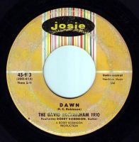 DAVID ROCKINGHAM TRIO - DAWN - JOSIE