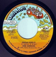 DON DOWNING - DREAM WORLD - ROADSHOW DEMO