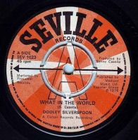 DOOLEY SILVERSPOON - WHAT IN THE WORLD - SEVILLE DEMO