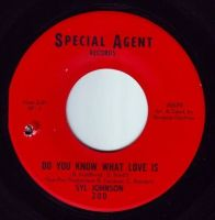 SYL JOHNSON - DO YOU KNOW WHAT LOVE IS - SPECIAL AGENT