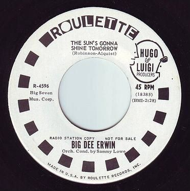BIG DEE IRWIN - THE SUN'S GONNA SHINE TOMORROW - ROULETTE DEMO