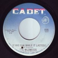WILDWEEDS - IT WAS FUN (WHILE IT LASTED) - CADET