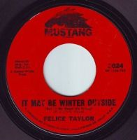 FELICE TAYLOR - IT MAY BE WINTER OUTSIDE - MUSTANG