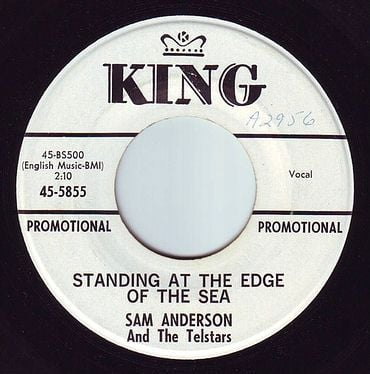 SAM ANDERSON - STANDING AT THE EDGE OF THE SEA - KING DEMO