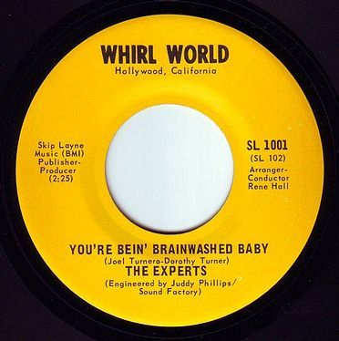 EXPERTS - YOU'RE BEIN' BRAINWASHED BABY - WHIRL WORLD