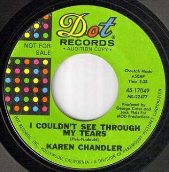 KAREN CHANDLER - I COULDN'T SEE THROUGH MY TEARS - DOT dj