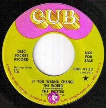 PETITES - IF YOU WANNA CHANGE THE WORLD - CUB dj