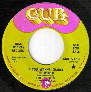 PETITES - IF YOU WANNA CHANGE THE WORLD - CUB dj