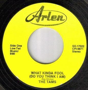 TAMS - WHAT KIND OF FOOL - ARLEN
