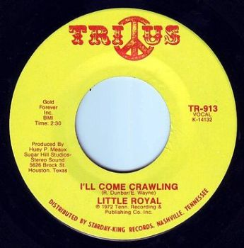 LITTLE ROYAL - I'LL COME CRAWLING - TRIUS