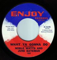 NOBLE WATTS & JUNE BATEMAN - WHAT YA GONNA DO - ENJOY