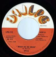 SPICE - WHAT DO WE MEAN - LPG