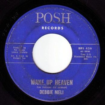 DEBBIE MELI - WAKE UP HEAVEN - POSH